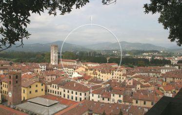 Lucca – Galeria